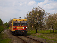 The MÁV-START 117 203 seen between Somogyszob and Nagyatád