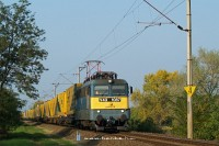 The V43 1087 with the Gartner container train between Délegyháza and Kiskunlacháza