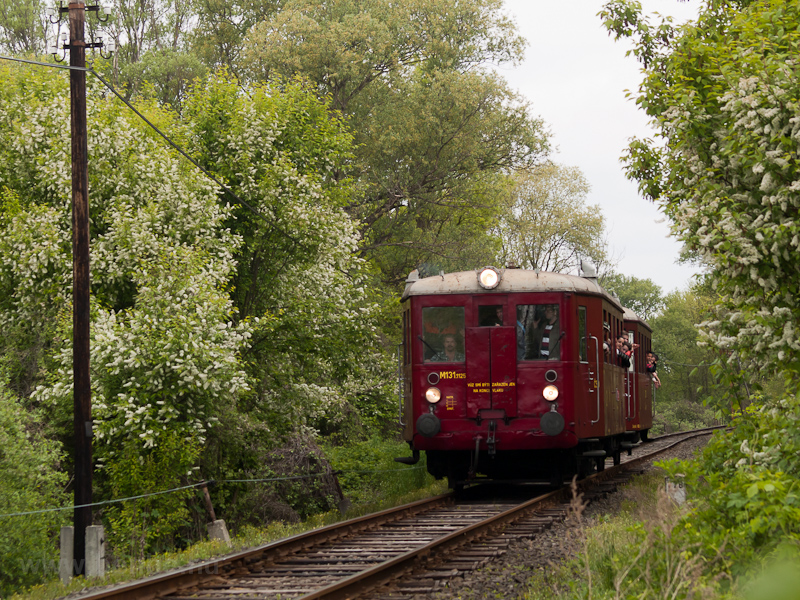 The ČSD M131.1125  Hurvínek  railcar between Ludányhalászi and Szécsény in the flowery forest photo