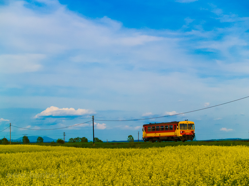 A MÁV-START Bzmot 341 Szécsény és Hugyag között fotó