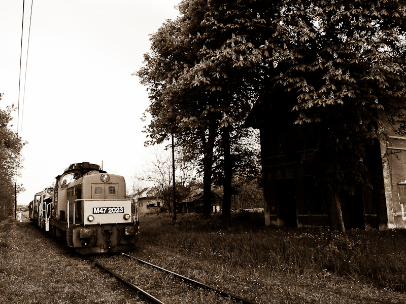 Locomotive train with M47 2023, M32,2040, M44 509 and Bzmot 340 at the abandoned Őrhalom station photo