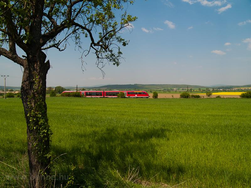 A 6342 011-1 pályaszámú Desiro motorvonat Kalonda és Rapp között, Szlovákiában fotó