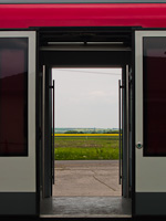A canola field in the doors of a Desiro railcar