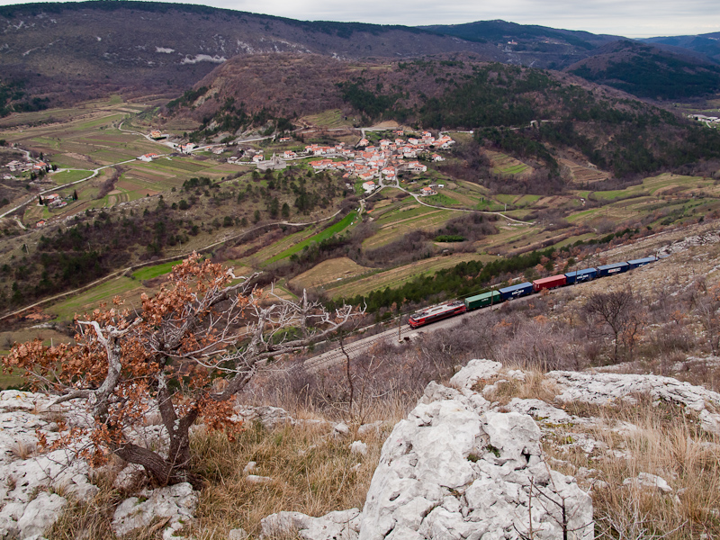A freight train with a class 363 seen between Črnotiče and Hrastovlje photo