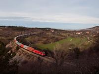 An ŠZ 541 is seen hauling a freight train between Črnotiče and Prešnica