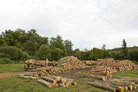 Kámaházi erdészlak rakodóhely fával és rakott kocsikkal