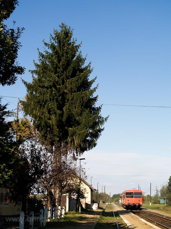 A  Bzmot  239 Mesztegny! fotó
