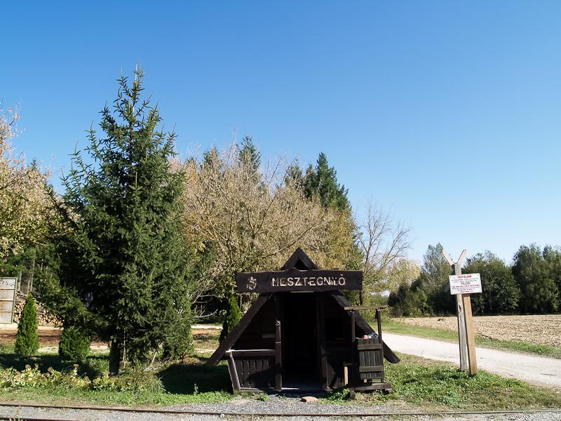 Mesztegnyő, erdei vasúti állomás fotó