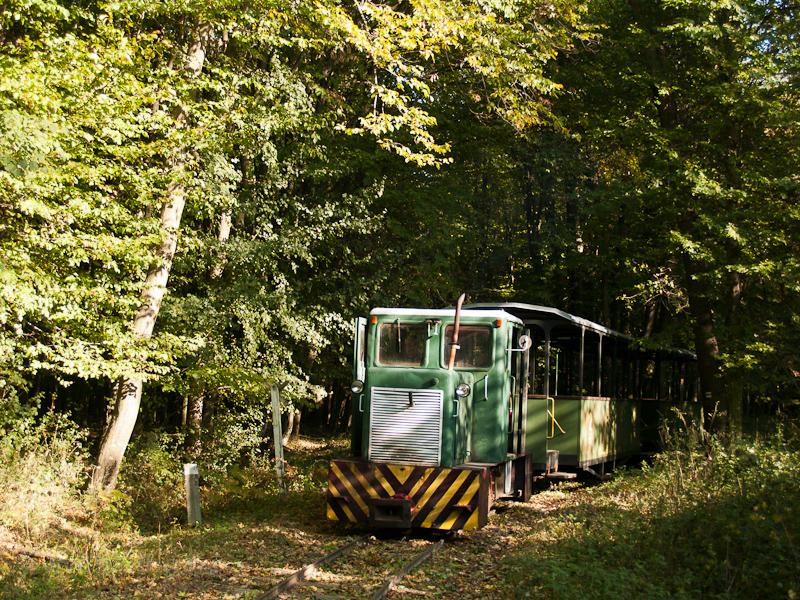 A Mesztegnyői Erdei Vasút C50-ese által vontatott szerelvény a kisvasúton fotó