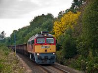 M62 300 (M�V)