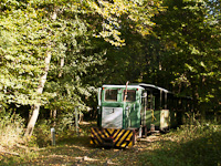 The C50 of the Mesztegnyő Forest Railway somewhere along the line