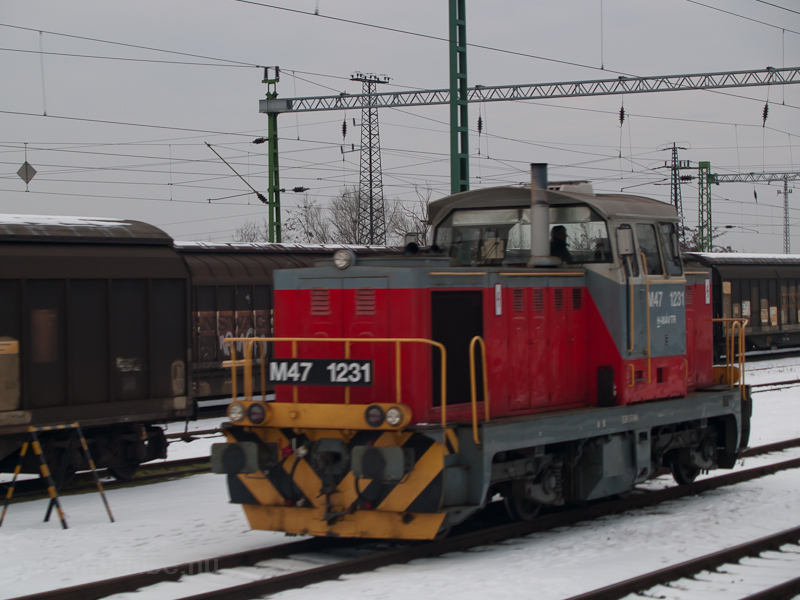 The MÁV-TR M47 1231 seen at photo