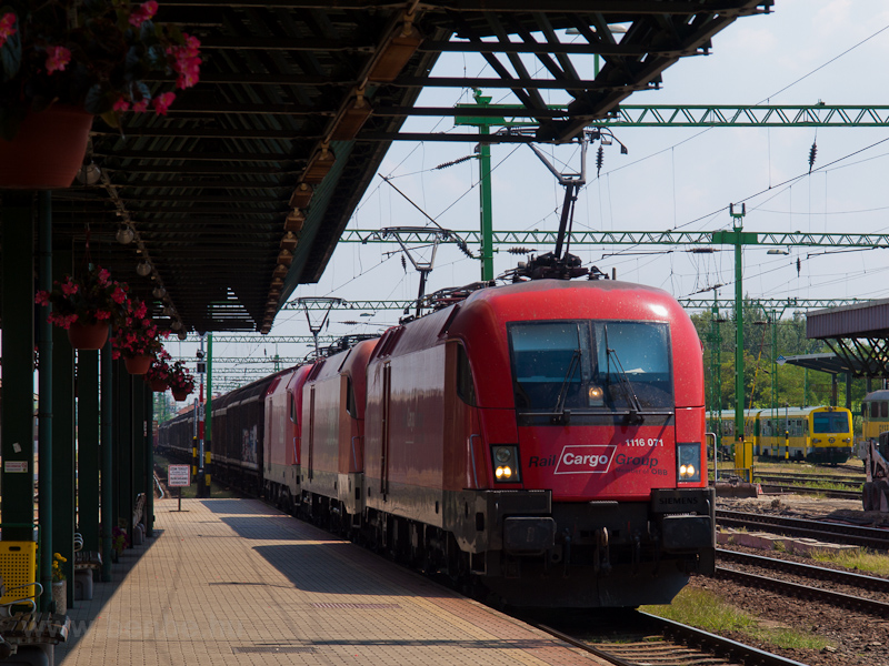 The ÖBB/RailCargoGroup 1116 picture
