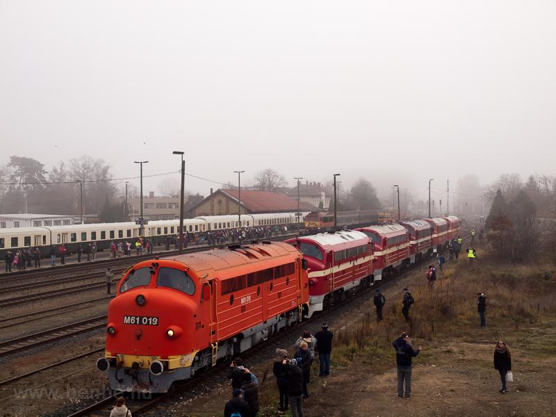 A MÁV-Nosztalgia kft. M61 019 Tapolca állomáson fotó