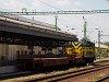 A GYSEV 448 301 Sopron állomáson segít a második peron átépítésében