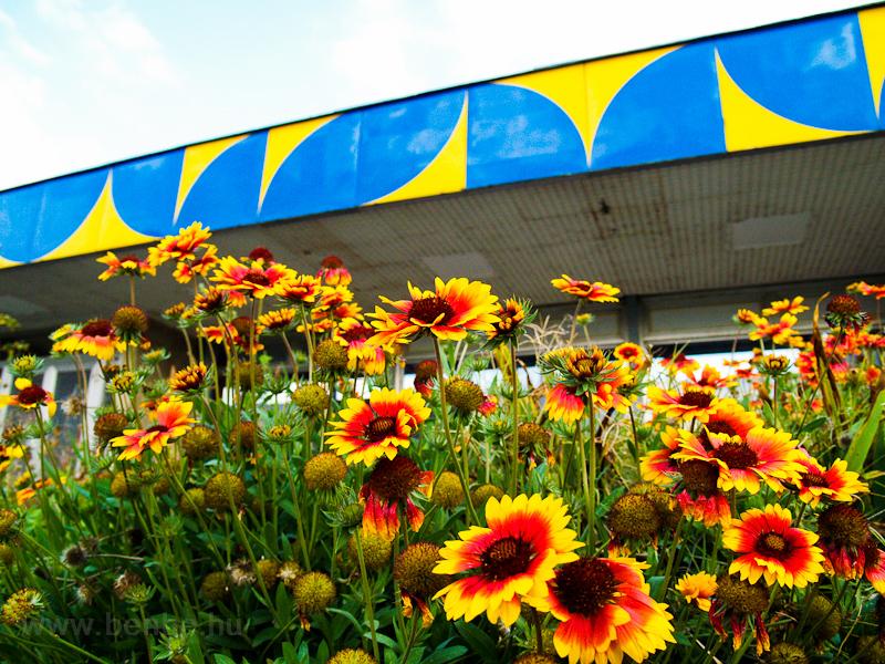 Paks vasútállomás fotó