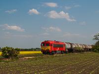 A MÁV-TR M41 2140 Börgönd és Székesfehérvár között