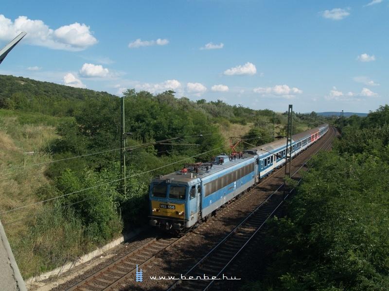V63 156 gyorsvonattal Szár és Szárliget között fotó