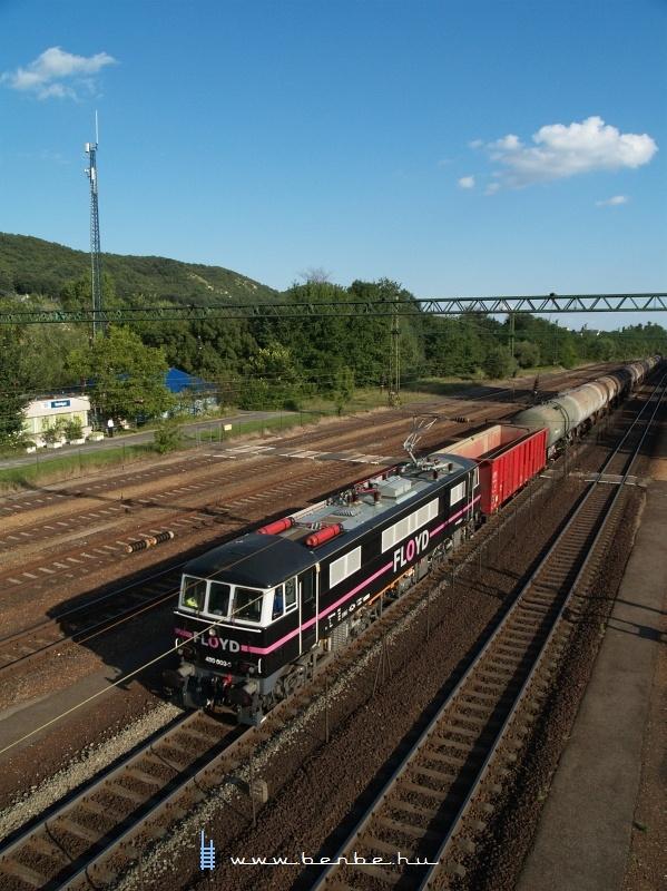 A Floyd kft. angol eredetű, 450 003-3 pályaszámú  Phoenix -mozdonya Szárliget vasútállomáson fotó