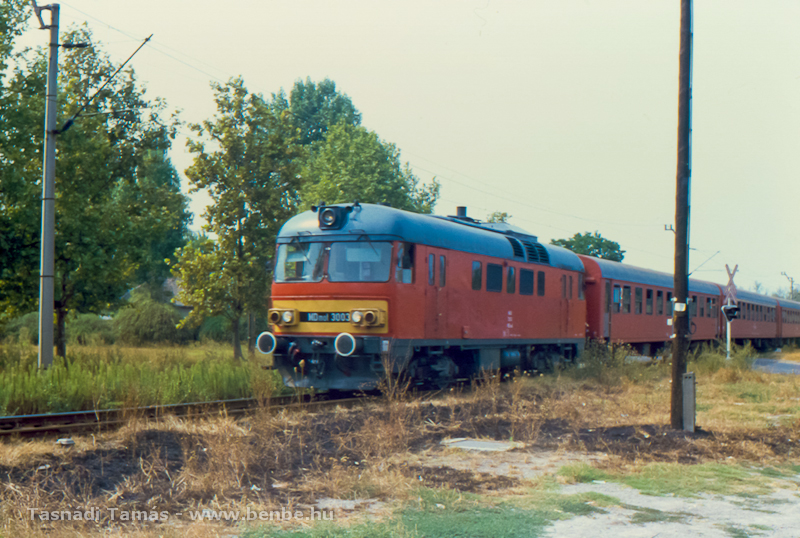 Az MDmot 3003 1992. Kecskeméten, a Vadaspark sarkánál augusztus 6-án Lakitelek felé tar vonatáva fotó