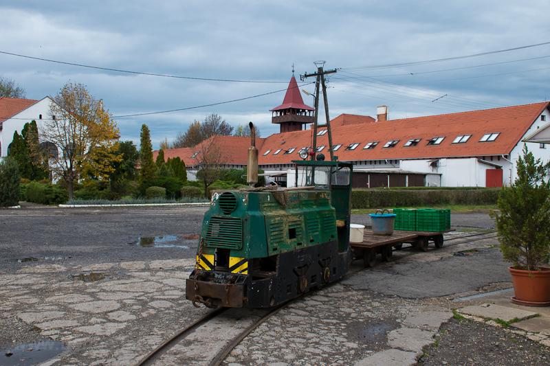 Egy ismeretlen Szegedi Halg fotó