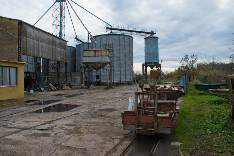Silos for the fish food photo