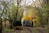 The Fehér-tavi Halgazdasági Vasút UE28 6 seen at I/9. siding / Beretzk Péter kiállító-ház (Kiskunsági Nemzeti Park)