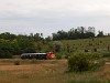 A Vál-Völgyi Kisvasút Mk48 2012 Alcsúti arborétum és Felcsút között