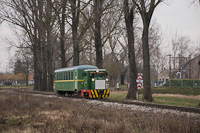 A MÁV-START C50 5733 Imremajor és Balatonfenyves GV között a menetrend szerinti személyvonattal