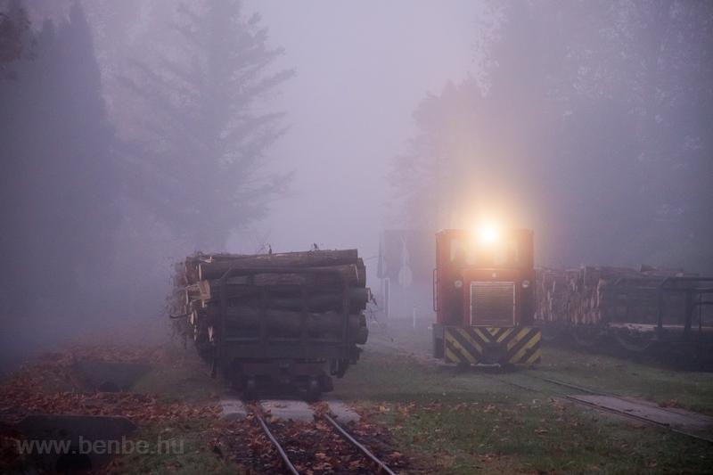 A Csömödéri Erdei Vasút C50 fotó