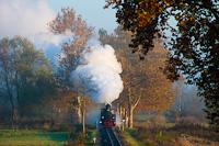 A Csömödéri Erdei Vasút 490 2002  Ábel  Csömödér ÁEV és Páka között
