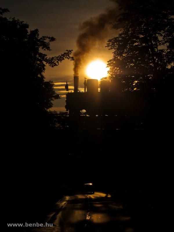 A Gyermekvasút 490,039 pályaszámú gőzmozdonya a Múzeumok Éjszakáján a szépjuhásznéi viadukton fotó