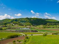 Szlovén gőzösök
