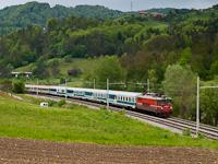 A SŽ 342 014 Celje és Laško között az EC 151 élén
