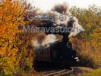 With a steam loco in the M�tra