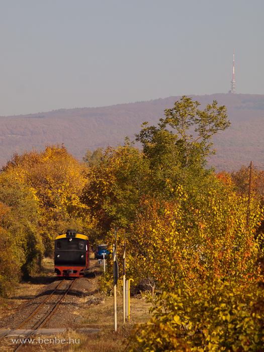 A Mátravasút 490 2005 pályaszámú, Gyöngyi nevű gőzmozdonya  Farkasmály-Borpincék és  Pipishegy között fotó