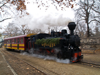 The Gyngyi steam locomotive at Gyngys