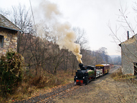 The Gy�ngyi steam locomotive at �rl�m� station