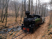 The Gyngyi steam locomotive at Lajoshza station