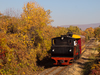 The 490 2005 Gy�ngyi of the M�travas�t between Farkasm�ly-Borpinc�k and Pipishegy