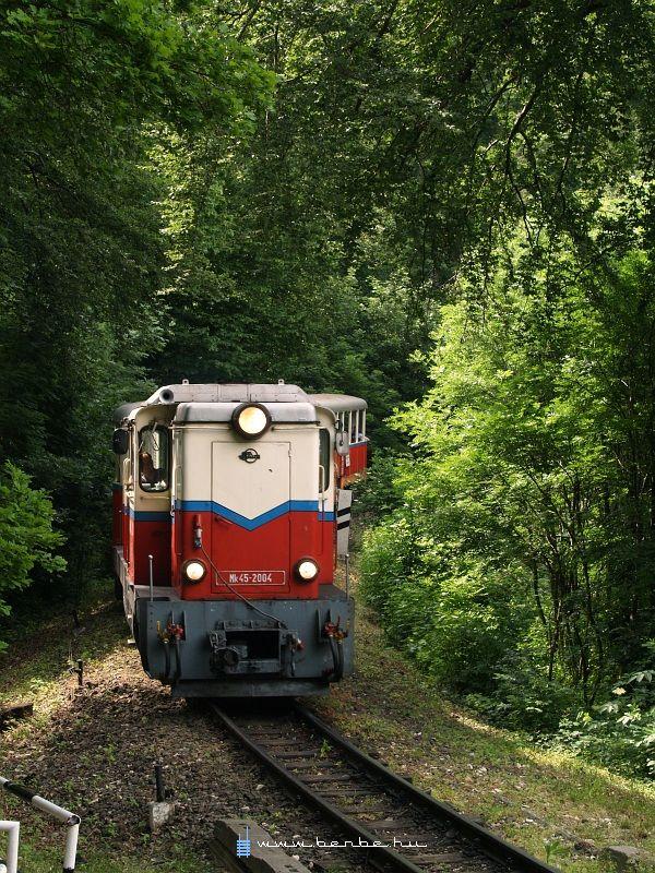 Mk45 2004 Virágvölgy és Csillebérc között fotó