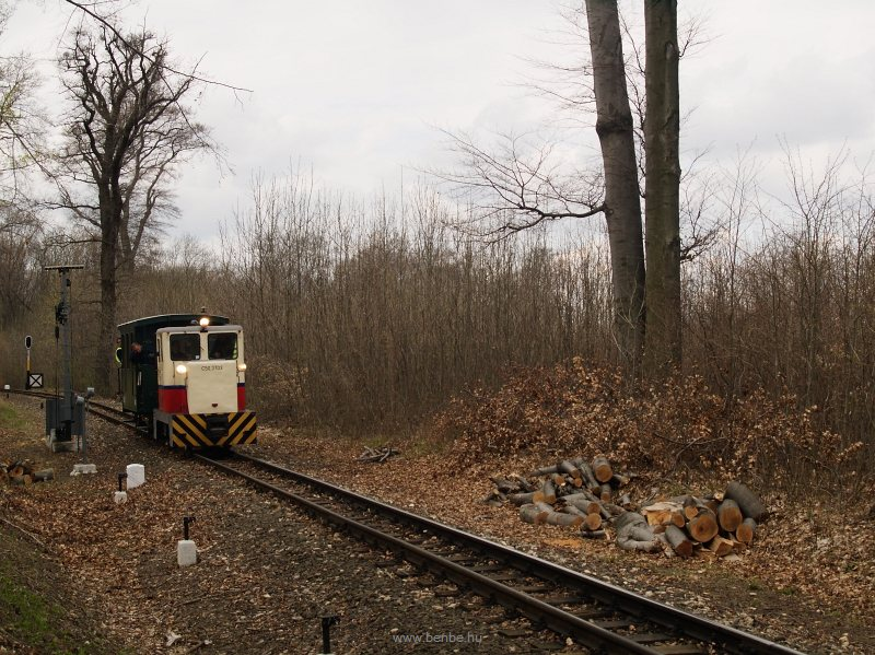 A GV/Gyermekvasút C50,3703 Csillebérc és Virágvölgy állomások között az erdőben fotó