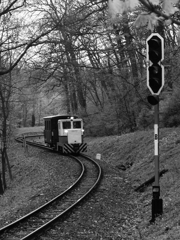 C50,3703 Szépjuhásznén fotó