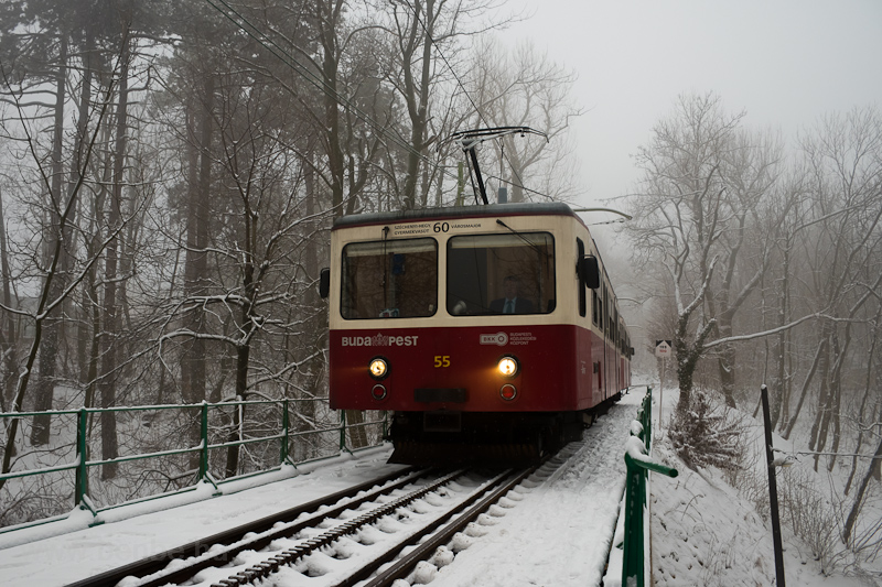 A Fogaskerekű Vasút (60-as villamos) SGP 55 motorkocsi Széchenyi-hegy és Művész út között fotó
