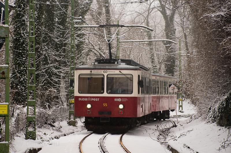 A Fogaskerekű Vasút (60-as villamos) SGP 55 Sváb-hegy és Városkút között fotó