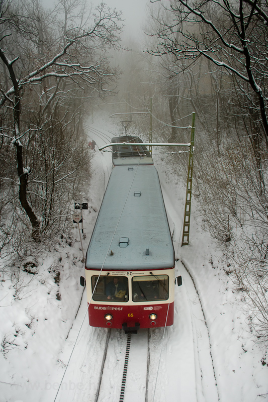 The Fogaskerekű Vasút (60-as villamos) SGP 65 seen between Művész út and Széchenyi-hegy photo