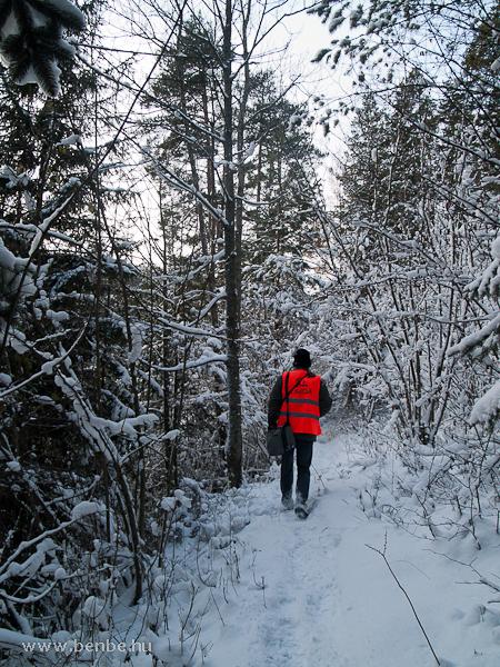 Ösvény a Kalte Rinne-Viadukthoz fotó