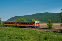 The MÁV-START 117 209 seen between Jósvafő-Aggtelek and Perkupa stations