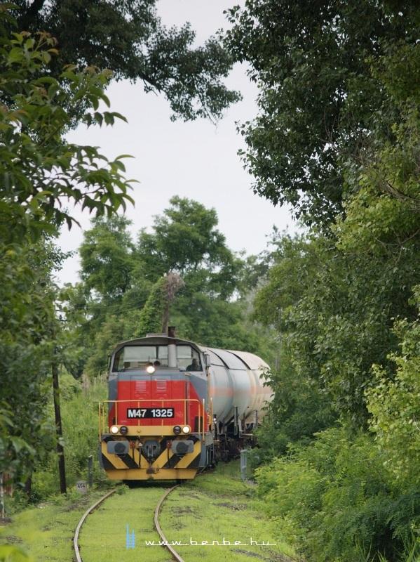 The M47 1325 is pulling a freight train between Tiszaalpár felső and Tiszaalpár photo