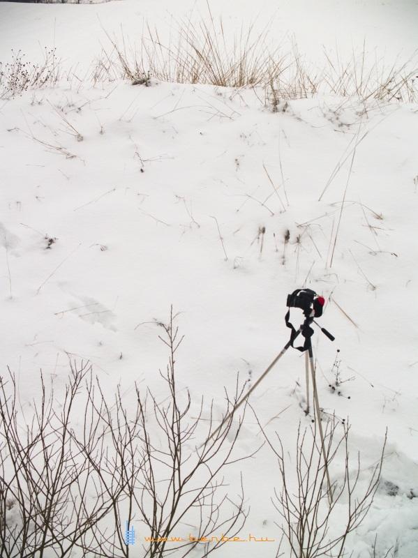 Így videózik a Kisvakond fotó